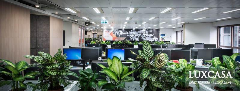 Thi công nội thất văn phòng xanh hiện đại, không gian mở